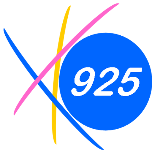 925 Websites logo image